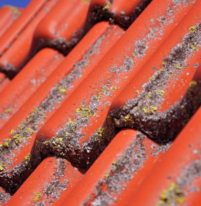 Dirty roof