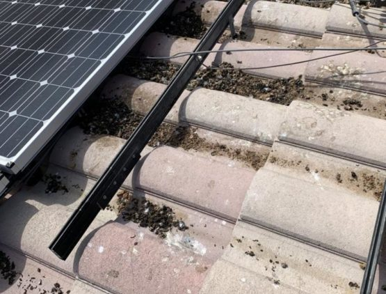 Solar panel cleaning services in Las Vegas